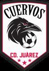 www.juarezcuervos.com